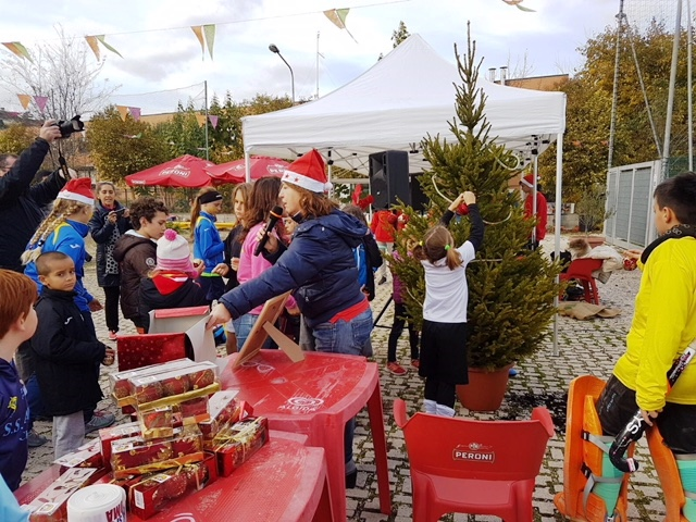 La Tradizione Dell'albero Nell'edizione Dello Scorso Anno A Via Avignone… (1)